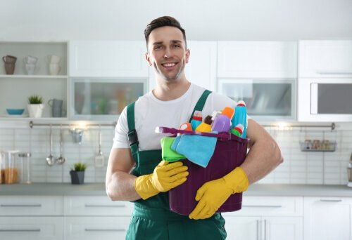 What products do professional house cleaners use
